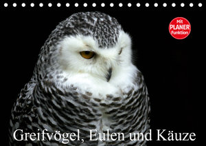 Greifvögel, Eulen und Käuze (Tischkalender 2019 DIN A5 quer)