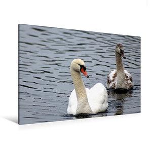 Premium Textil-Leinwand 120 cm x 80 cm quer Vater und Sohn