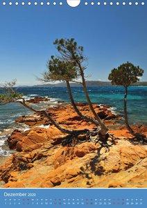 Korsika - Felsen und Meer (Wandkalender 2020 DIN A4 hoch)