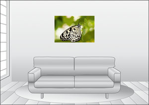 Premium Textil-Leinwand 90 cm x 60 cm quer Weiße Baumnymphe