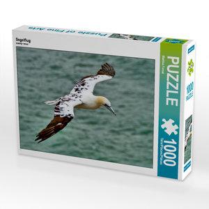CALVENDO Puzzle Segelflug 1000 Teile Lege-Größe 64 x 48 cm Foto-