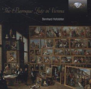 Baroque Lute In Vienna