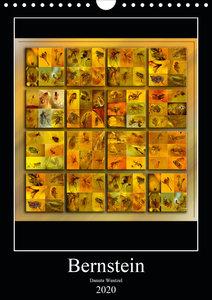 Bernstein (Wandkalender 2020 DIN A4 hoch)