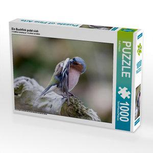 Ein Buchfink putzt sich 1000 Teile Puzzle quer