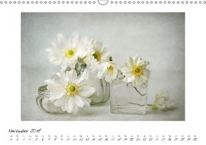 Kleine Blütenwunder