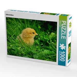 CALVENDO Puzzle Hühnerküken 1000 Teile Lege-Größe 64 x 48 cm Fot