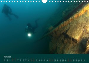 Faszination Süsswasser (Wandkalender 2020 DIN A4 quer)