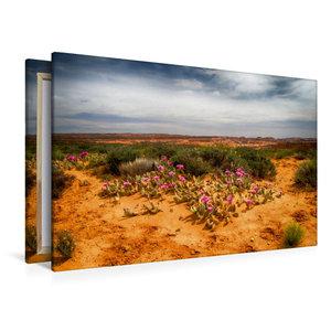 Premium Textil-Leinwand 120 cm x 80 cm quer Im Escalante Nationa