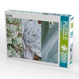 CALVENDO Puzzle Erwartung 2000 Teile Lege-Größe 67 x 90 cm Foto-