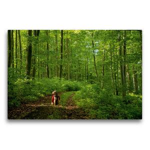 Premium Textil-Leinwand 75 cm x 50 cm quer Das Grüne Band ganz g