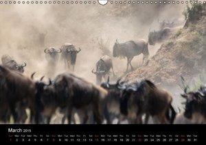 Wildlife Around The World (Wall Calendar 2015 DIN A3 Landscape)