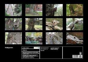 Waldgeister (Posterbuch DIN A2 quer)