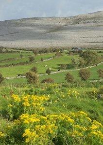 Irland - von Antrim bis Dingle (Posterbuch DIN A2 hoch)