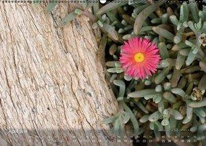Die Farben von Lanzarote - In der Ruhe liegt die Kraft (Wandkale
