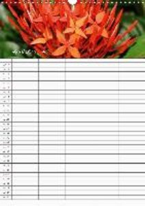 Tropical Flowers (Wall Calendar 2015 DIN A3 Portrait)