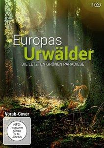 Europas Urwälder - Die letzten grünen Paradiese