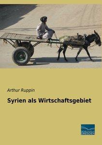 Syrien als Wirtschaftsgebiet