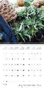 Tropical Market (Wall Calendar 2015 300 × 300 mm Square)