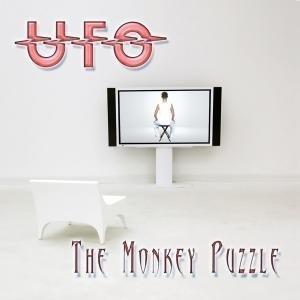The monkey puzzle