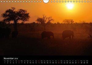 Dream with me of Kenya (Wall Calendar 2016 DIN A4 Landscape)