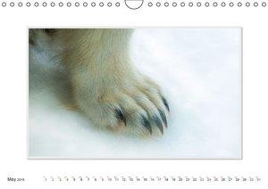 Emotional Moment:The Polarbear. UK-Version (Wall Calendar 2015 D