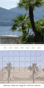 Palms: A Wonderfull Touch of Paradise (Wall Calendar 2015 300 ×