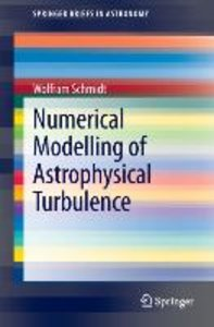 Numerical Modelling of Astrophysical Turbulence