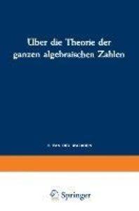 Über die Theorie der ganzen algebraischen Zahlen