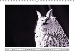 Natural black - white painting / UK-Version (Wall Calendar 2015