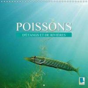 Poissons : d\'étangs et de rivières (Calendrier mural 2015 300 ×