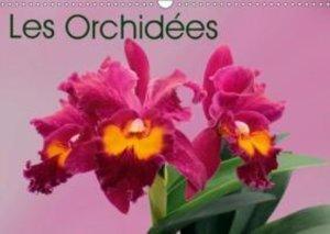 Les Orchidées (Calendrier mural 2015 DIN A3 horizontal)