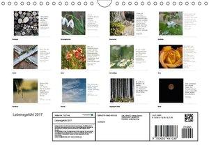 Lebensgefühl 2017 (Wandkalender 2017 DIN A4 quer)