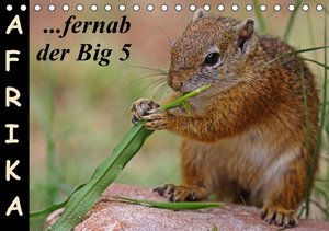 Afrika - fernab der Big 5 (Tischkalender 2016 DIN A5 quer)