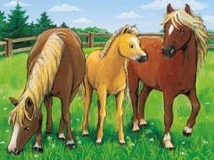 Tiere auf dem Bauernhof (12 Teile)