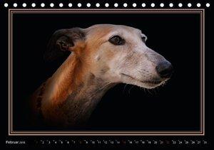 Redecker, A: Galgo Español 2015 (Tischkalender 2015 DIN A5 q