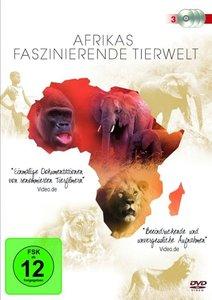 Afrikas Faszinierende Tierwelt