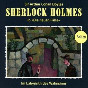 Im Labyrinth Des Wahnsinns (Neue Fälle 29)