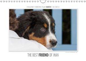 Gerlach, I: Emotional Moments: the Best Friend of Man. UK-Ve