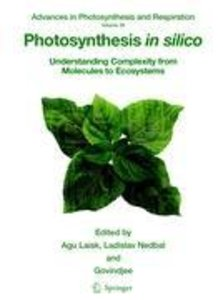 Photosynthesis in silico