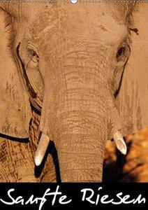 Sanfte Riesen - Afrikas Elefanten (Wandkalender 2017 DIN A2 hoch