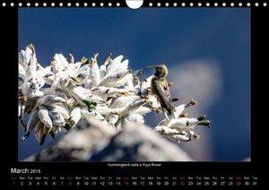 Exotic Peru (Wall Calendar 2015 DIN A4 Landscape)