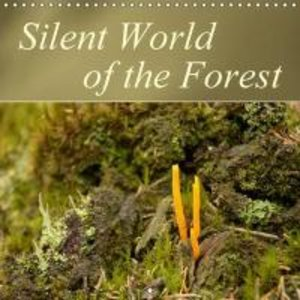 Silent World of the Forest (Wall Calendar 2015 300 × 300 mm Squa
