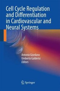 Cell Cycle Regulation and Differentiation in Cardiovascular and