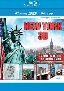 New York 3D