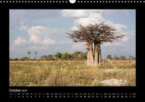 Southern Africa 2016 (Wall Calendar 2016 DIN A3 Landscape)