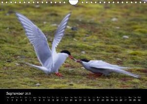 Svalbard / UK-Version (Wall Calendar 2015 DIN A4 Landscape)