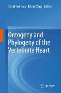 Ontogeny and Phylogeny of the Vertebrate Heart