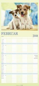 Familienplaner Cool Dogs - Kalender 2018