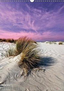 Between dunes and sea (Wall Calendar 2015 DIN A3 Portrait)