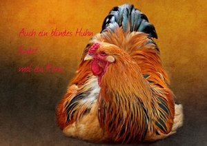 Hultsch, H: Volksmund (Posterbuch DIN A4 quer)